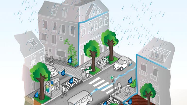Infographic: the Rainproof street